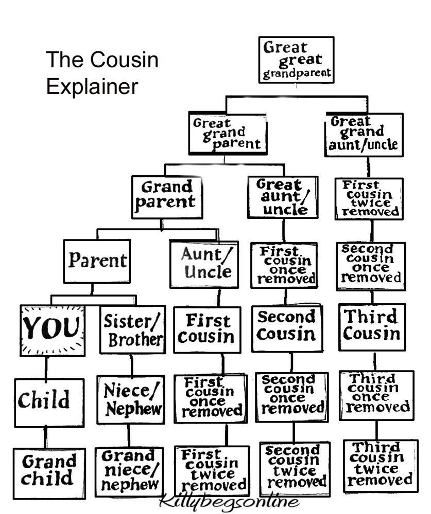 Removed third cousin once What is